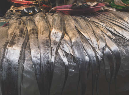 famous Jeju hairtail fish on display for sale at Jeju Dongmun market 免版税图像