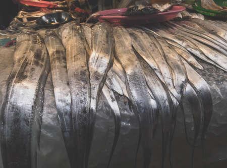 famous Jeju hairtail fish on display for sale at Jeju Dongmun market 版權商用圖片