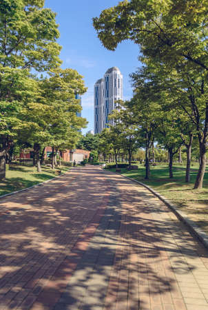 paved footpath alley inside APEC Naru park in Busan on sunny day