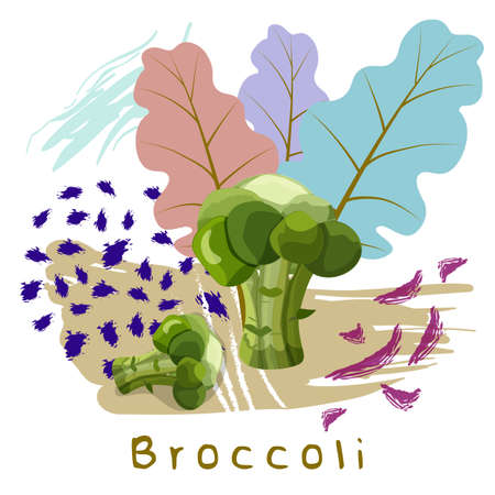 vector illustration of broccoli ornamented with colorful decorative and abstract elements Stock Illustratie