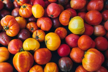 Delicious colorful organic tomatoes at the farmers market, selective focus. Fresh juicy bio tomatoes at the marketplace. Organic vegetables for healthy eating. Vegetarian food. 写真素材
