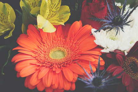 Close up of colorful vibrant spring gerberas flowers bouquet. Wedding invitation or Valentine day concept.