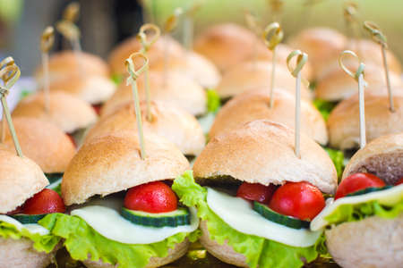Catering for party. Mini sandwiches with lettuce, cherry tomatoes and cheese.