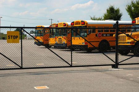 School buses parked at the schoolyard.