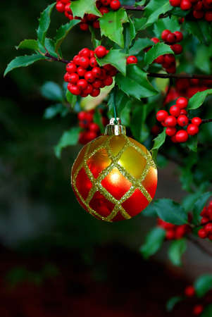 A beautiful ornament hangs from a holly branch with a black background and  space for copy.