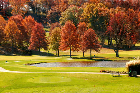 Autumn Foliage at the Golf Course - The sun shines on a putting green and lake at a golf course in Autumn. Imagens