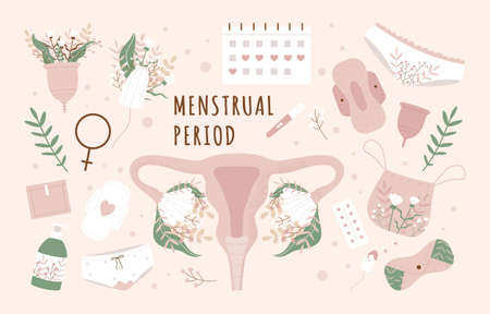 Menstruation period set. Various feminine hygiene products including zero waste objects. Women's panties, tampons, pads, calendar, cups. Flat cartoon vector illustration isolated on pink background Vektorové ilustrace