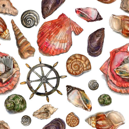 Watercolor pattern of sea life isolated on white background. Collection of colorful hand painted seashells,  mollusks, rudder