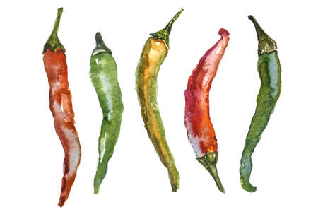 cayenne: Watercolor set of chili pepper isolated on a white background
