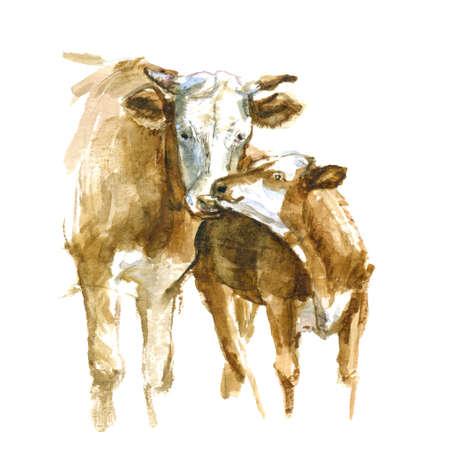 ママの牛および子牛。かわいい手描きイラスト