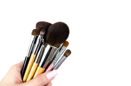 Professional makeup brush cosmetic in female hand. Makeup brush set. Copy space
