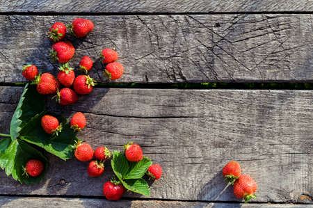 Strawberries on rustic wooden background with copy space. Fresh organic berries Banque d'images