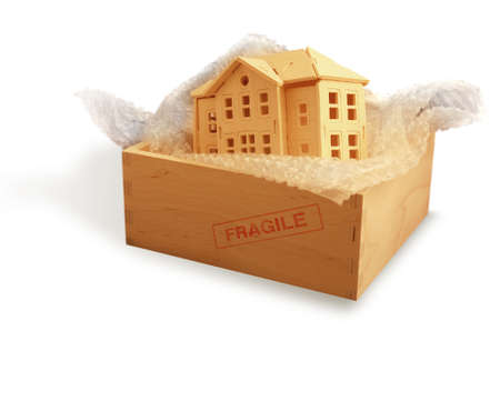 house protection in box         photo