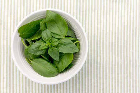 Fresh basil leaves presented in a bowl - copy space provided Stock fotó