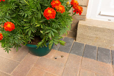 Security Concept - Key left under a plant pot next to a front door.