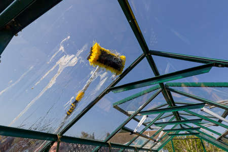 Cleaing a dirty greenhouse roof with a telescopic water fed pole