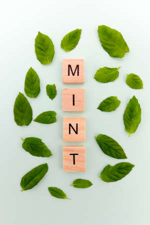 Mint leaves and the word mint on a green background