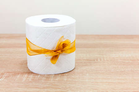 Toilet paper tied with a ribbon - copy space provided