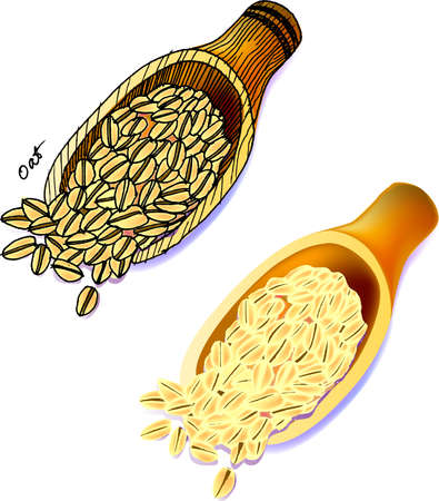 oat: a vector illustration for a cup of oats, sketch, drawing