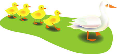 ducklings: vector illustration for a mother duck bring along her for ducky as a row, fun and cute