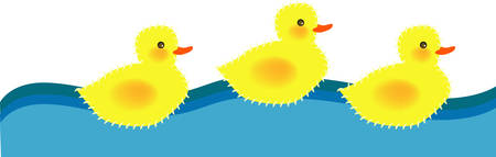 vector illustration for three ducky are swimming, movement, fun and cute