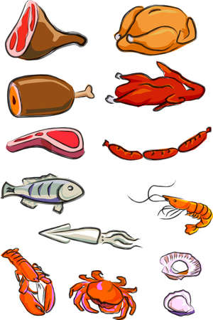 a vector illustration for a variety of meats, chicken, duck, pork, beef, lamp chop, hot-dog, fish, squire, lobster, crab, prawn, oyster, scallop,