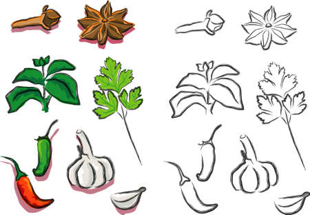 clous de girofle: Une illustration vectorielle pour une vari�t� de la nourriture pour l'assaisonnement