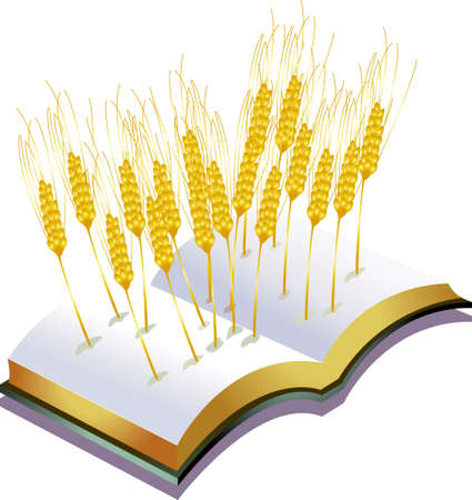 a lot of grains growing from a book, metaphors for harvest. Illustration