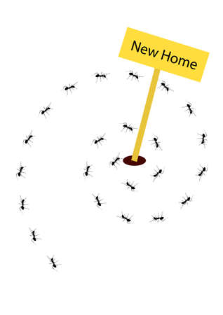 ants: ants are moving into thier new home Illustration