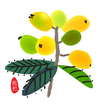 chinese style traditional painting - loquat Stock Photo