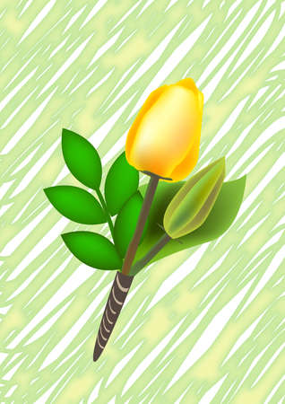 yellow rose boutonniere on the brush stroke background for wedding.