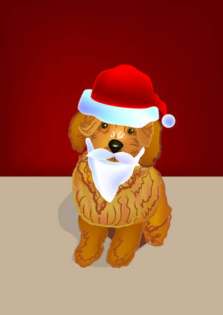 brown poodle dog wearing a santa red hat and santa beard. Stock Photo