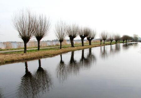 plassen: In a row.. Stock Photo
