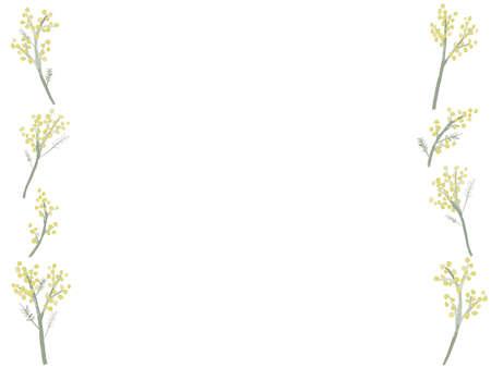 Es ist eine Illustration einer stilvollen Mimose, die wie Aquarell gezeichnet wird.