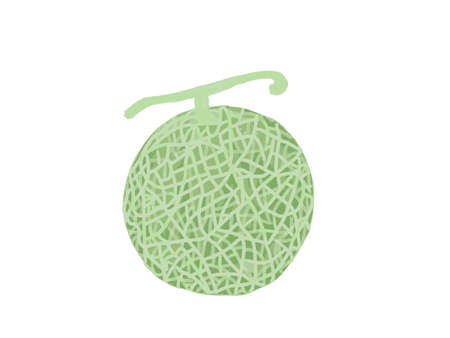 It is a cute illustration of a fresh melon. Иллюстрация