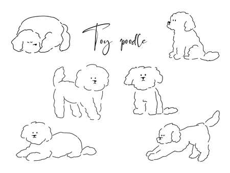 It is a handwritten illustration of a toy poodle written with a pen.
