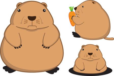 fatty prairie dog cartoon Vettoriali