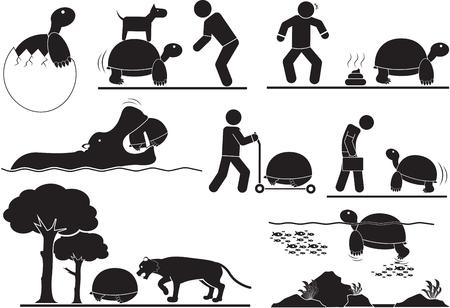 turtle icons