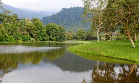 A lake in a public park