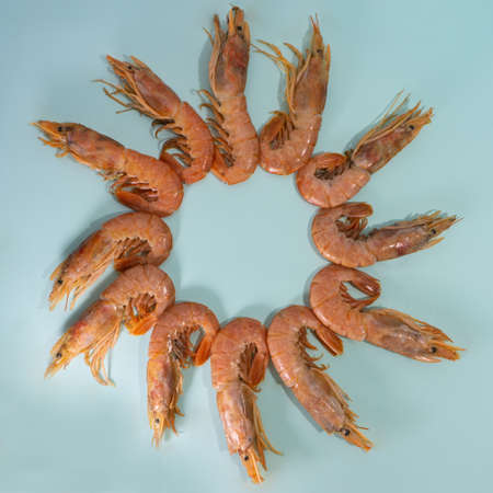 langoustines laid out in a circle. Banque d'images