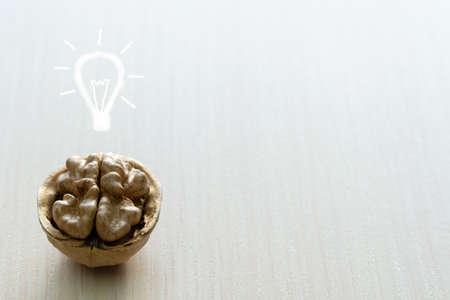 walnut in the shell is like a brain.