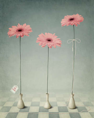 Three Gerberas in white vases. Greeting holiday cards. Three flowers in white vases. Computer graphics.