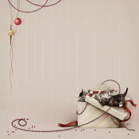 Red beads and Kittens. Christmas. photo