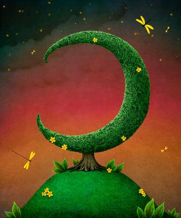 moon: Tree Moon