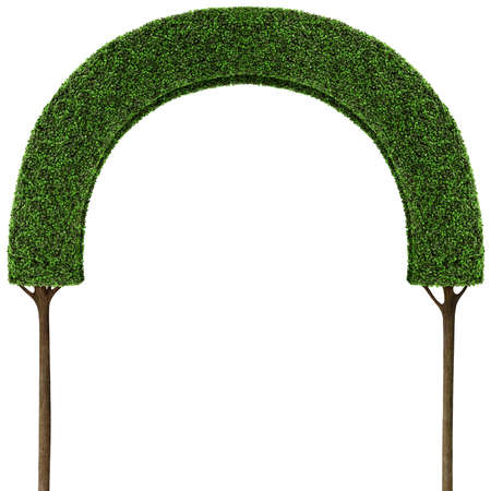 Isolated green tree fairy arch for an illustration or poster.
