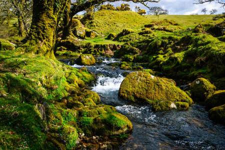 Dartmoor National Park Engeland rivier Stockfoto