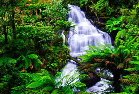 waterfall otway national park australia photo