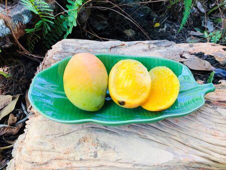 Ripe Mango tree (Mangifera caloneura Kurz) fruits in a green ceramic dish shaped banana leaf , one cut in half