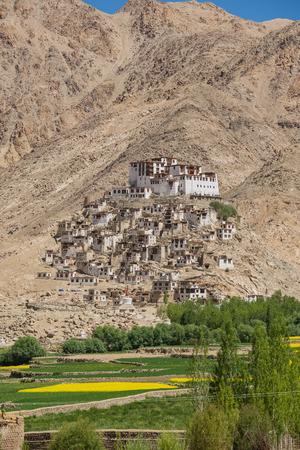 mustard field: Chemrey Monastery in Leh Ladakh India.With mustard field. Stock Photo