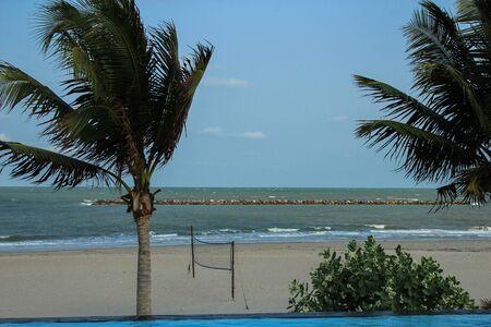 해변과 코코넛 나무에 비치는 배구 네트
